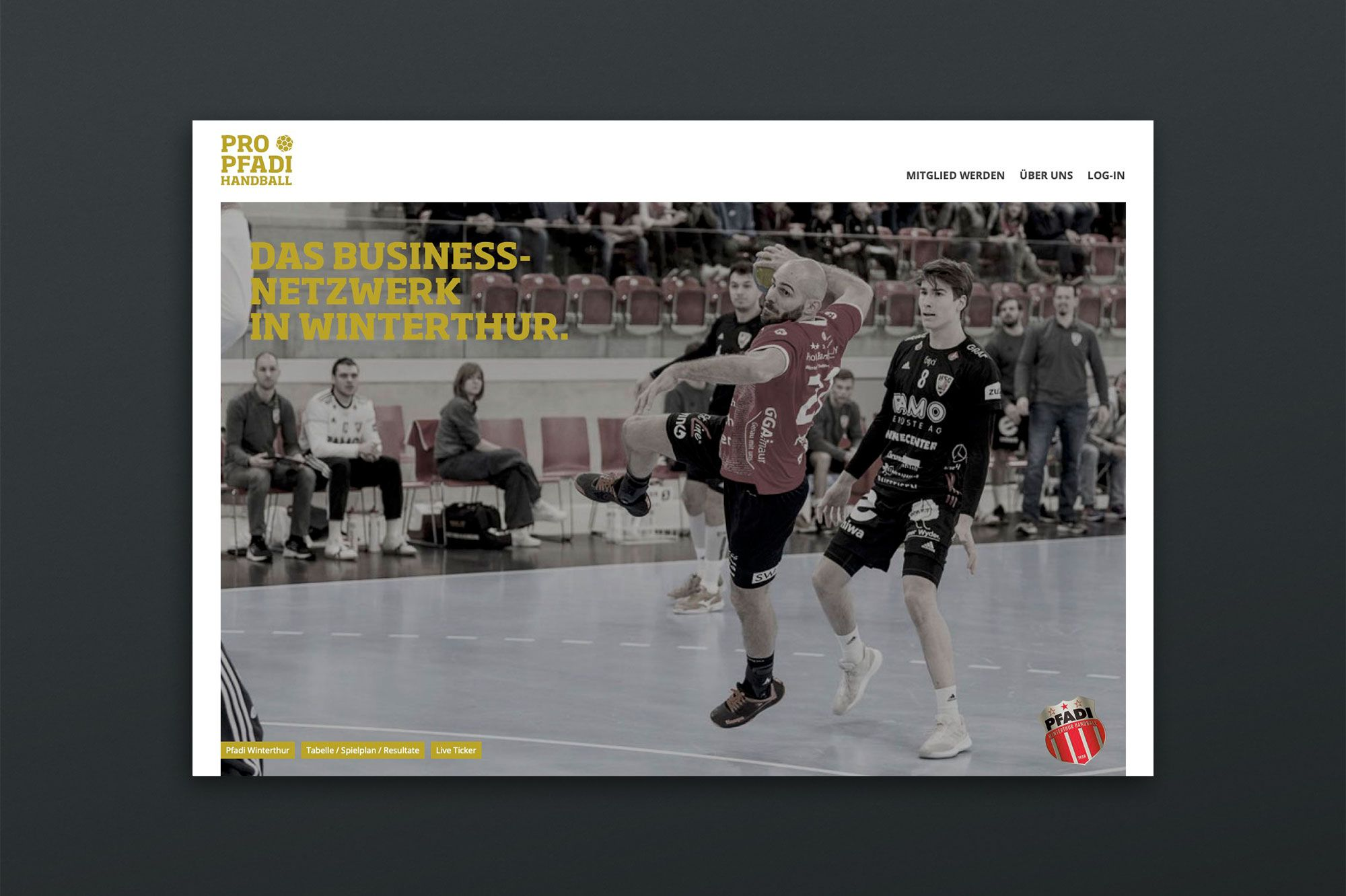 ProPfadi Website